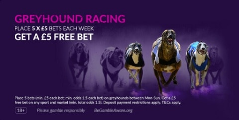 VBET Greyhound Racing £5 Free Bet