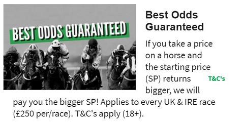 QuinnBet Best Odds Guaranteed - Horses