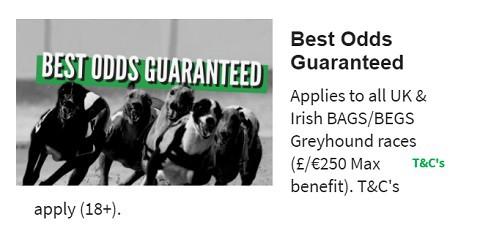 QuinnBet Best Odds Guranteed - Greyhounds